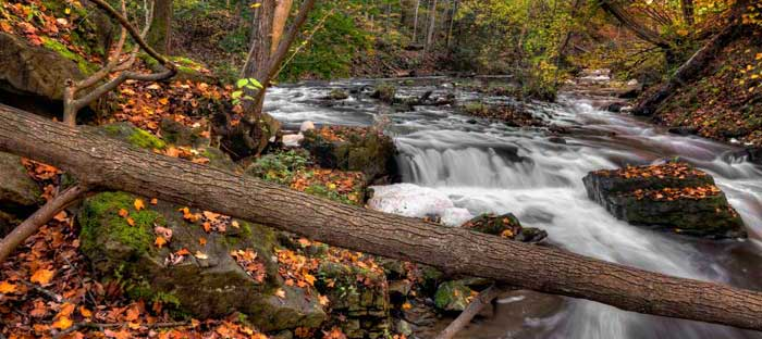 fall is a wonderful time to enjoy shopping, dining, and the wonderful sights in Ambler, Montgomery County PA